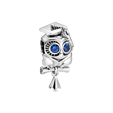 Wise Owl Graduation Charm